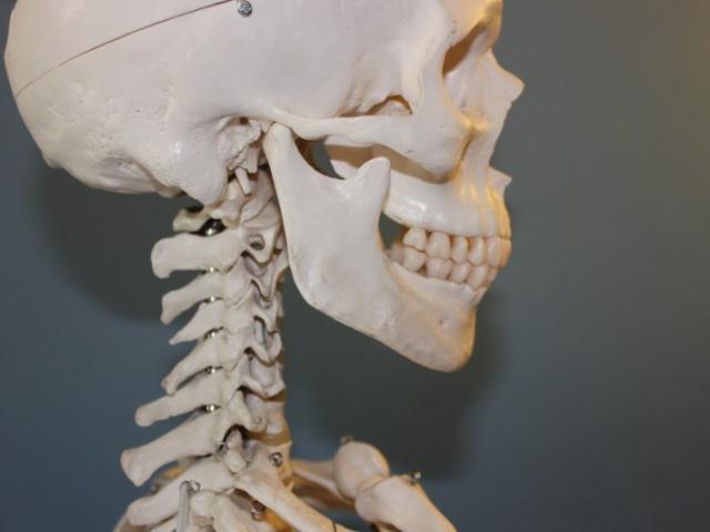 Troubles de l'ATM : votre ostéopathe à La Chapelle-Launay peut vous aider !